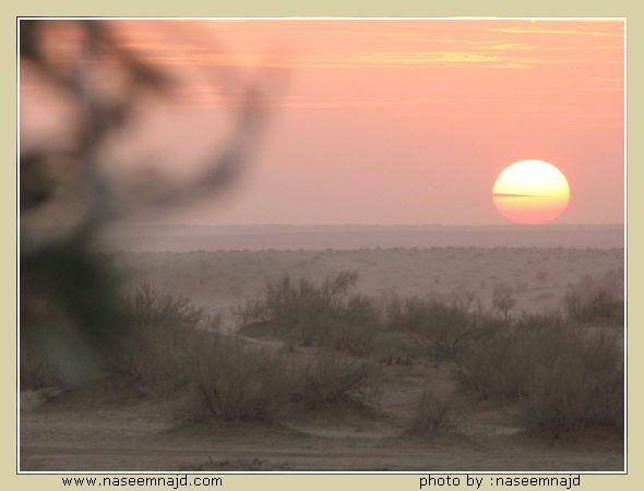 ô¤~...}:{عنـــد بداية المساء ...~¤ô Image00012.JPG