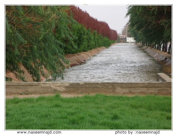 نهر الراين معلومات وصور رائعه.. Image00070.JPG