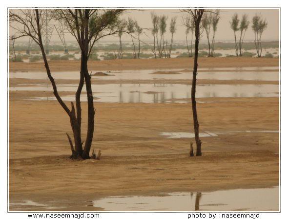 صور الأمطار على البدائع وبريدة و عنيزة والرس و القصيم ودي الرمة